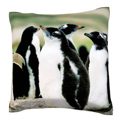 Custom Photo Factory - Colony of Gentoo Penguins Polyester Velour Throw Pillow - Colony of gentoo penguins on one of the falkland islands 18 x 18 Inches  Made in Los Angeles, CA, Set includes: One (1) pillow. Pattern: Full color dye sublimation art print. Cover closure: Concealed zipper. Cover materials: 100-percent polyester velour. Fill materials: Non-allergenic 100-percent polyester. Pillow shape: Square. Dimensions: 18.45 inches wide x 18.45 inches long. Care instructions: Machine washable