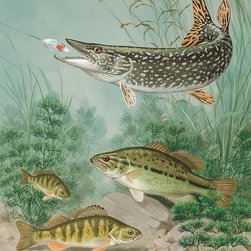 Magic Murals - Fish on a Hook Wallpaper Wall Mural - Self-Adhesive - Multiple Sizes - Magic Mur - Fish on a Hook Wall Mural