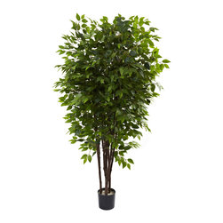 Nearly Natural - Nearly Natural 6.5' Deluxe Ficus Tree - A pure explosion of forest green - that's exactly what this beautiful Ficus tree personifies. With several straight stalks that shoot upwards, it provides the ideal backdrop for the absolute burst of leaves that inhabit them (more than 2500 in all.) Plus, these leaves do not need water or sun to stay green, so your Ficus tree will stay beautiful-looking for years to come. Makes a great gift as well as an ideal home or office decoration.