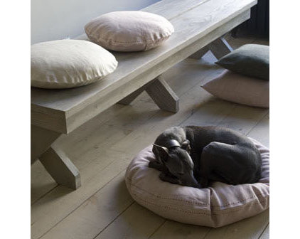 Contemporary Dog Beds by canvas