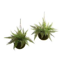 Nearly Natural - Leather Fern with Mossy Hanging Basket (Indoor/Outdoor) (Set of 2) - The fern is an ideal 'hanging basket' plant. The 'delicate but full' leaves are seemingly made to spill out and over a pot, and the fresh look really brings home the sense of nature. This is a set of two leather ferns, complete with stunning 'mossy-look' hanging baskets. Best of all, they are suitable for outdoors (as well as inside), meaning your decorating options are numerous (and year-round). Makes a great gift, too.