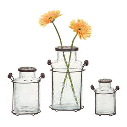 Alexis Metal & Glass Vases - The Alexis vase mixes glass and metal to showcase flower buds in a unique and beautiful way. Holes in the top are big enough for your favorite flower stems. Metal and glass contrast to create a stylish, hipster-friendly arrangement that isn't fussy or overly traditional, and handles make it all portable, so you can move your bouquet from the living room to the rooftop table with ease.