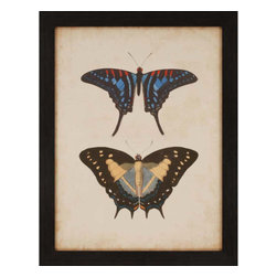 Paragon - Antique Butterfly III - Framed Art - Each product is custom made upon order so there might be small variations from the picture displayed. No two pieces are exactly alike.