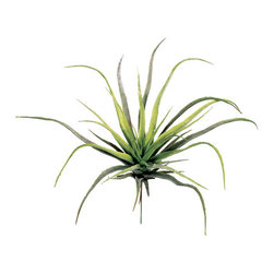 Silk Plants Direct - Silk Plants Direct Tillandsia (Pack of 24) - Pack of 24. Silk Plants Direct specializes in manufacturing, design and supply of the most life-like, premium quality artificial plants, trees, flowers, arrangements, topiaries and containers for home, office and commercial use. Our Tillandsia includes the following:
