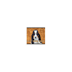 Caroline's Treasures - Basset Hound Wipe Your Paws Indoor or Outdoor Mat 18 x 27 Lh9450Mat - Basset Hound Wipe your Paws Indoor or Outdoor Mat 18x27 LH9450MAT Indoor/ Outdoor Floor Mat 18 inch by 27 inch Action Back Felt Floor Mat / Carpet / Rug that is Made and Printed in the USA. A Black binding tape is sewn around the mat for durability and to nicely frame the artwork. The mat has been permanently dyed for moderate traffic and can be placed inside or out (only under a covered space). Durable and fade resistant. The back of the mat is rubber backed to keep the mat from slipping on a smooth floor. Wash with soap and water.