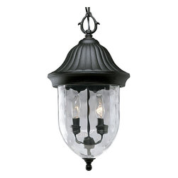 Progress Lighting - Progress Lighting Coventry Traditional Outdoor Hanging Lantern X-13-9255P - This Traditional Outdoor Hanging Lantern by Progress Lighting is a true treasure. Featuring optic hammered glass and a Fieldstone Finish, this piece is not only classic, but visually intriguing. Add some charm to your outdoor area with this wonderful lighting fixture!