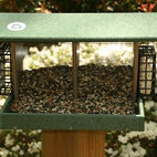 Songbird Essentials - Large Double Hopper Hunter Driftwood - Hunter Driftwood recycled plastic Large Hopper w/ 2 seed bins and 2 suet cages. Great for using different types of seed and suet or seed cakes. Powder coated screens for drainage and easy to clean and disinfect. 19 x 12.5 x 2