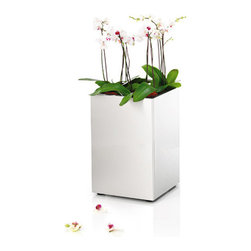 Blomus - Greens Cube, Large - The Greens Cube helps the modern plant-enthusiast to create an idyllic blend of cool design with the warmth of plant life. Its magnificent angles of brushed stainless steel provides a subtly elegant space for your greens to flourish.