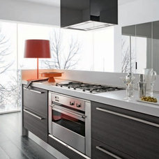 Contemporary Kitchen Cabinetry by Dream Design Mavens