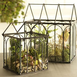 Wire Terrariums - Like tiny fragments of architecture, terrariums are a unique way to add interest to an otherwise dull window ledge. The best part is that they are completely customizable so you can suit your space and preference however you please.