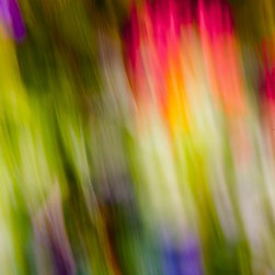 Abstraction Of Butterflies, Limited Edition, Photograph - This photograph portrays the vast colors of a butterfly. The red, green, and blue are evident in the movement of the camera. Purple, brown and other shades of green depict the foliage surrounding it.  All images are available in the following sizes: 13x19 unframed on Luster photographic paper -;  17x25 unframed on Luster photographic paper -;  20x30 Printed on Metallic and Mounted on Plexiglass -$1100.  Limited to 9 artist proof editions in a particular size. They will be signed and numbered on the back of the image.  I print all images using the latest technology, the highest-quality papers, and newest archival inks. Additionally, I include a 5mm white border to ensure proper handling that eliminates the potential for fingerprints.