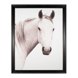 Kathy Kuo Home - Hyden Rustic Lodge Modern Solo Horse Photo Wall Art - Framed - With stark beauty and pure presence, this equine portrait will really stand out on your wall. This white horse could be the one that gallops in to save your decor! This stunning shot is available framed or unframed.