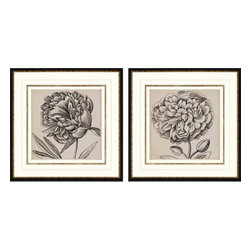Paragon - Graphic Floral I PK/2 - Framed Art - Each product is custom made upon order so there might be small variations from the picture displayed. No two pieces are exactly alike.