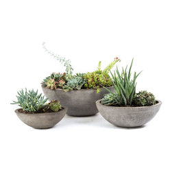 Repose Home - Yano Planter, Charcoal Grey, Medium - This beautiful Elongated style planter is cast from cement and natural fiber for added strength while keeping a lightweight feel for versatile use. Artfully showcase garden greenery with its gorgeous organic tone.
