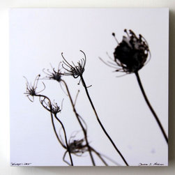 """Winter'S Lace, 8X8 Wood Panel, Winter Photography"" Artwork - Photograph of queen anne's lace in winter.  printed on matte archival photo paper and mounted on an 8x8 wood panel.  sealed with clear acrylic sealer.  1.5"" white sides.  signed and titled.  original photo by doug hockman photography.  custom sizes available.   photo title: winter's lace panel size: 8x8"