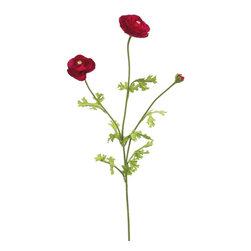 Silk Plants Direct - Silk Plants Direct Ranunculus (Pack of 6) - Pack of 6. Silk Plants Direct specializes in manufacturing, design and supply of the most life-like, premium quality artificial plants, trees, flowers, arrangements, topiaries and containers for home, office and commercial use. Our Ranunculus includes the following: