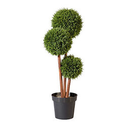 """Improvements - 36"""" Cedar Pom Pom Topiary - Use the Cedar Pom-Pom Topiary to enhance your entryway, porch, sun room, or any corner of your home. With an artificial topiary, you never have to water it or trim the branches. The Cedar Pom-Pom Topiary is UV-stabilized to resist fading. Our Cedar Pom-Pom Topiaries have the beautiful look of real greenery but are maintenance-free. The charming design of the Cedar Pom-Pom Topiary is sure to dress up any home, outdoors or in. This stylish artificial topiary features cedar leaves artfully shaped into three balls on wood-look stems. Just place the weighted plastic pot inside one of our stone-look urns (sold separately) or use your own decorative planter. The durable polyethylene foliage is weather-resistant so you can enjoy the Cedar Pom-Pom for many years. This artificial topiary looks amazingly natural, even up close, and you never have to worry about watering or trimming! NOTE: Urn planter shown at left is sold separately. Benefits of the Cedar Pom-Pom Topiary:   Looking for a different style? Check our complete selection of Topiaries & Artificial Plants."""