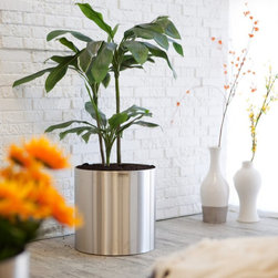 Blomus - Large Round Stainless Steel Blumentopf Planter Multicolor - 66850 - Shop for Planters and Pottery from Hayneedle.com! The simple yet stylish look of the Large Round Stainless Steel Blumentopf Planter adds a distinctive individuality to any updated setting. Made of durable stainless steel this cylindrical planter is designed for years of use. Plant your favorite perennial directly into the pot; a plastic saucer is included to protect the base and allow for proper watering. SIZE DIMENSIONS:Dimension DefinitionsHeight(H): Measurement from top to bottomDiameter(Dia): Measurement across the opening 11 in. Planter 11.7 diam. x 12.291H inches Weight: lbs. 13 in. Planter 13.65 diam. x 13.65H inches Weight: lbs. 15 in. Planter 15.6 diam. x 15.6H inches Weight: lbs. 19 in. Planter 19.5 diam. x 18.14H inches Weight: lbs. 23 in. Planter 23.4 diam. x 17.94H inches Weight: lbs. About BlomusBased in Sundern Germany Blomus is an international designer of functional and decorative stainless steel products for the home interior and exterior. Their aim is to harmonize form and function to create special products for everyday life such as kitchen accessories wellness elements patio accents and decorative items. Their designs soften the cold and sterile edge of stainless steel by combining it with other materials. For Blomus design is not an end in itself but an important part of everyday life.
