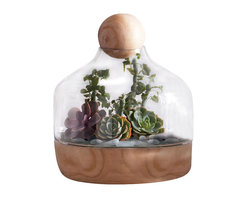 Copenhagen Terrarium - Wide - One of the hottest trends that never goes out of style are terrariums. Perfect for either objects of art, succulents or air plants, the Copenhagen Wide Terrarium has a chic appeal with its mouth blown glass vessel and Paulownia Wood base that is versatile and can be seamlessly integrated into a guest room or living room of various styling. Topped with a wooden sphere to finish the look, this terrarium, with its clean lines and natural components, is suitable and breathtaking in any setting.