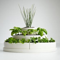 Three Tier Herb Planter and Seeds - Fresh herbs add so much life to salads! This is probably the most beautiful herb planter I've seen and would look great anywhere in the kitchen.