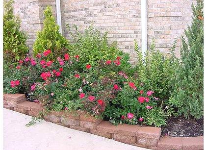 Knockout Rose Garden Designs
