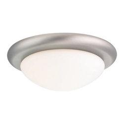 Sea Gull Lighting - One-Light Antique Brushed Nickel Ceiling Fan Light Kit - -Material: Steel  -Pull Chain Sea Gull Lighting - 16148BL-965