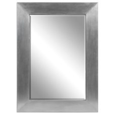 Transitional Mirrors by Fratantoni Lifestyles