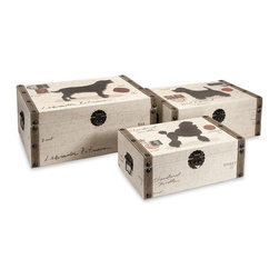 iMax - Pet Theme Storage Boxes - Inspired by post card designs, the set of three pet themed storage boxes make organizing easy and stylish!