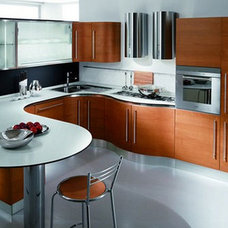 Contemporary Kitchen Cabinets by Gene Sokol / Euroluxe Interiors