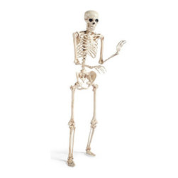 Grandin Road - 5' Halloween Skeleton Figure - Halloween Decorations and Decor - Life-size skeleton is so detailed, he's like the real thing. Crafted from durable plastic. Finished with a realistic, antique bone-toned finish. A hinged jaw and posable limbs make it possible to display him however you see fit. No bones about it – this is one realistic 5 ft. Skeleton. With a frightening level of detail, our durable plastic fellow is hand-painted and hinged at all joints for extreme realism. Hang him from the ceiling, pose him in a chair, or take him outside and drape him from a tree limb.  .  .  .  .