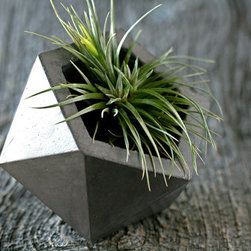 Concrete Geodesic Planter, Dark Gray by At Stuart - Inspired by the geodesic dome, this hand-cast cement planter is pure organic architecture for the garden. I'd fill it with something colorful or with succulents. A grouping of them would be stunning.