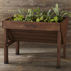 Traditional Outdoor Planters by Williams-Sonoma