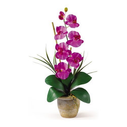 """Single Stem Phalaenopsis Silk Orchid Arrangement - Bursting with color and personality the Phalaenopsis is perhaps the most popular variety of all the orchids. Six lively blooms and two buds are complimented by genuine bamboo, which enhances the silk plant's authenticity. Featuring nearly natural leaves, moss and roots, this familiar favorite is sure to charm the masses. Color: Orchid, Height: 21"""", Vase: H 4-1/4"""" W 5-1/4"""" Height= 21 in x Width= 9 in x Depth= 6 in"""