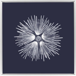 Wendover Art - Sea Urchin Print - This striking Giclee on Paper print adds subtle style to any space. A beautifully framed piece of art has a huge impact on a room for relatively low cost! Many designers and home owners select art first and plan decor around it or you can add artwork to your space as a finishing touch. This spectacular print really draws your eye and can create a focal point over a piece of furniture or above a mantel. In a large room or on a large wall, combine multiple works of art to in the same style or color range to create a cohesive and stylish space!