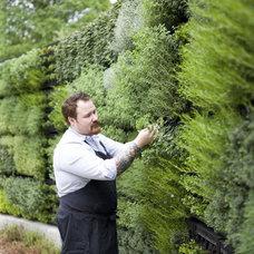 Eclectic Garden Sculptures Herb Garden Wall