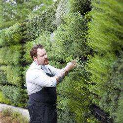 Herb Garden Wall -