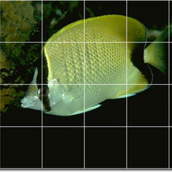 Picture-Tiles, LLC - Sea Life Photo Bathroom Tile Mural 1 - * MURAL SIZE: 24x36 inch tile mural using (24) 6x6 ceramic tiles-satin finish.