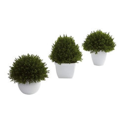 """Mixed Cedar Topiary Collection (Set of 3) - Sometimes a subtle, accent decoration fits the bill. That's exactly what these mixed cedar topiaries provide. They are small (between 5.5 and 6.5""""), delicate looking (with beautiful, almost """"fluffy"""" faux cedar), and come in a lovely little planter. Plus this is a set of three, so you can display them in multiple places (or keep some for yourself and give the rest as a gift.) Height= 5.5 - 6.5 In. x Width= 4.5 - 5.5 In. x Depth= 4.5 - 5.5 In."""