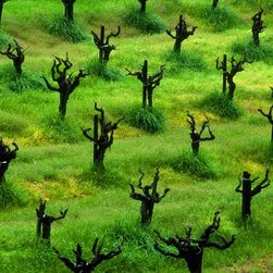 Dry Creek Vineyard Artwork - Regular rows in spring in a vineyard. Matted 16 x 20.