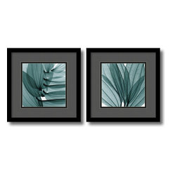 Gray and Black Lilies - set by Steven N. Meyers