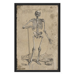"""The Artwork Factory - """"Humani Corporis Ossium"""" Print - Don't save the skeletons for Halloween! Find a place in your home for this museum-quality poster that depicts the human form in all its boney glory. Printed on high resolution, acid-free, fade-resistant paper with 12-color pigment ink, with a wood frame, glass and metal sawtooth hangers."""
