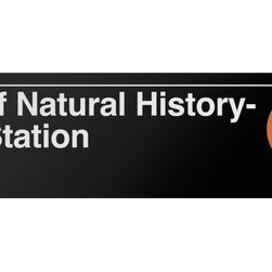 Underground Signs - Museum of Natural History- 81 Street, Vinyl Sign - Located at Central Park West, this station is located near the Museum of Natural History and serves an average ridership of 4,116,976 passengers. Sign is made to order, lead time 1-3 weeks.