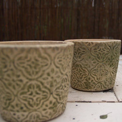 Medallion Moss Pot in Terracotta Pots - These small pots are perfect for plants you've just seeded or grown from your more mature plants. They have a very light green wash that won't clash indoor or out. They would look great on a window sill.