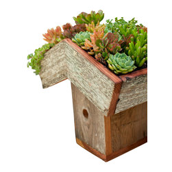 Green Roof Birdhouse - This birdhouse is handmade locally in Santa Cruz with recycled redwood. You can plant the top with low growing ground covers or succulents. The hole is to specifications for small garden birds and can be easily taken apart for cleaning. Birdhouse comes unplanted.