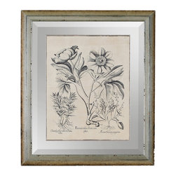 Besler Peonie IV Framed Botanical Engraving - The meticulous detail in antique naturalists' illustrations is artwork in itself, and finely distressed surroundings only enhance the beauty of such works. This reproduction print of a labeled black-and-white sketch of a peony flower has been reprinted on a field the color of antique vellum, then elegantly preserved on a panel of sleek beveled mirror. A heavily aged frame of metallic silver wood surrounds the neutral-colored botanical art assemblage.