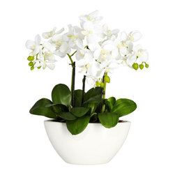 "Nearly Natural - Phalaenopsis Silk Flower Arrangement - It brings the brightness of a sunny day. Simple yet an elegant touch. Perfect for a dining room centerpiece. Construction Material: Polyester material, plastic, Iron, Glass. 12 in. W x 7 in. D x 16 in. H ( 2 lbs. ). Pot Size: 8.75 in. W x 3.5 in. D x 4.5 in. HBring the brightness of a sunny day to any room in your home with this gorgeous Triple Mini Phalaenopsis. With three distinct stems sprouting forth from a lush base of green leaves culminate in soft, bright blooms (replete with berry buds for contrast.) This ""bundle of sunshine"" comes complete with a beautiful white bowl-vase planter. Makes an ideal gift."