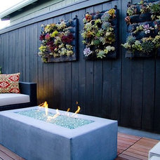 Contemporary Patio by Eco Minded Solutions