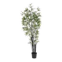Nearly Natural - 6' Black Bamboo Silk Tree (2 Thick Trunks) - There is nothing quite like the gentle majesty of the Bamboo Tree. With its strong stalks and delicate leaves wistfully branching out in all directions, the Bamboo has captivated people the world over. And this perfect recreation of a thriving Bamboo Tree will add a touch of sophistication to any room (or yard.) Sporting 1,132 leaves and crafted from the finest materials, this amazing tree will bring you pleasure for years to come.