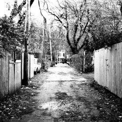 """Paths"" -- 16x24 inches Artwork - This fascinating black and white photograph captures the secret world behind our houses.  Signed by the artist, Fahd Husain, it makes a striking statement in your favorite setting and a worthy addition to your art collection."