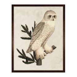 Kathy Kuo Home - Banzanini 18th Century Rustic Grand Snow Owl Engraving - Framed - Wise guy. Evoking Native American art motifs and midcentury style, this wide-eyed snow owl is a must for your country home, cabin or anywhere that the great outdoors is appreciated.